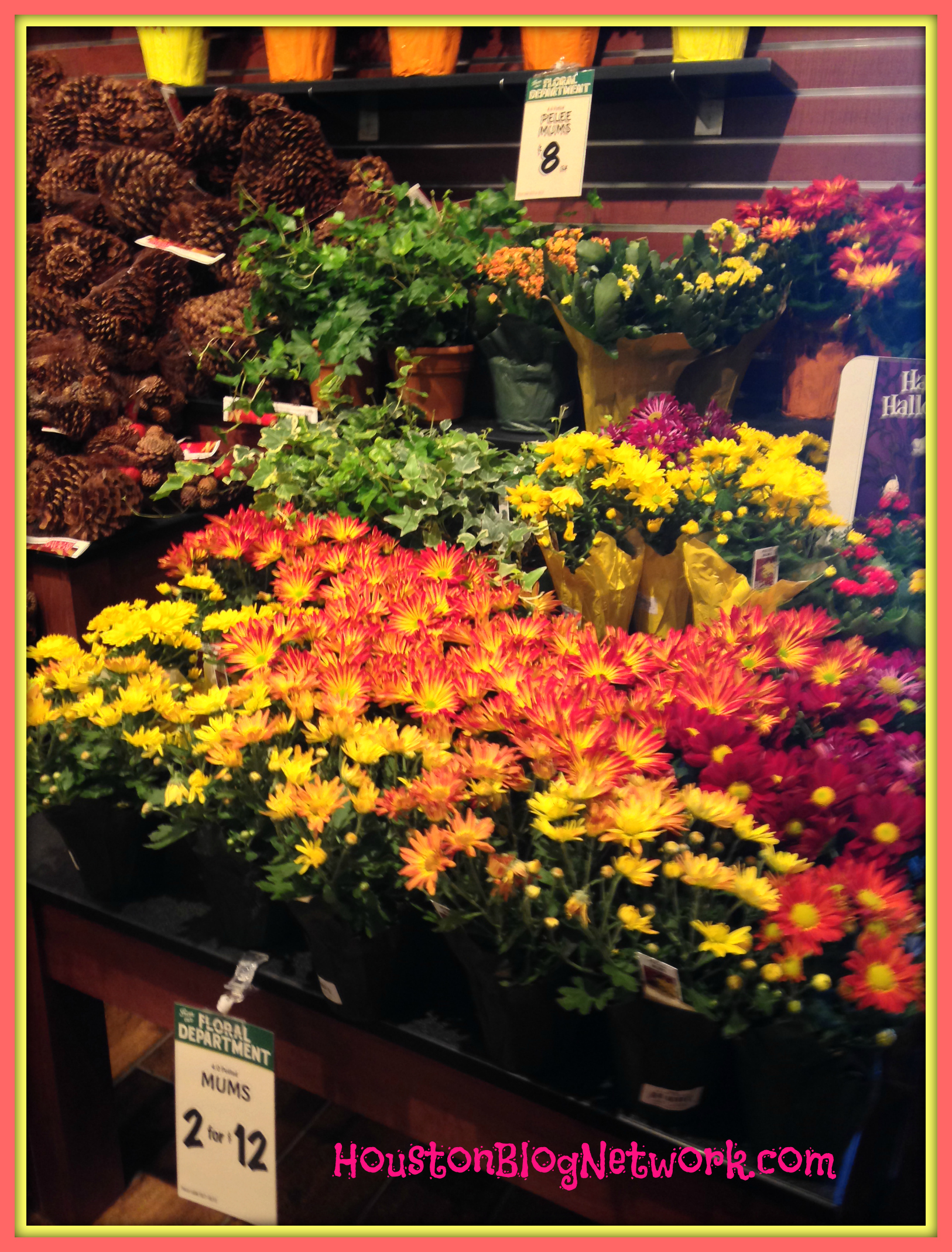 The Fresh Market Flowers